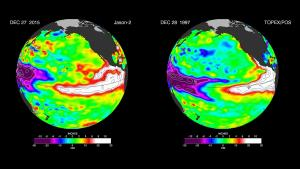 These images provided by NASA satellites compare warm Pacific Ocean temperatures from the strong El Nino that brought North America large amounts of rainfall in 1997, right, and the current El Nino.