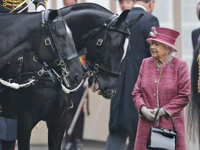 The Queen's horses win £6.7million in prize money