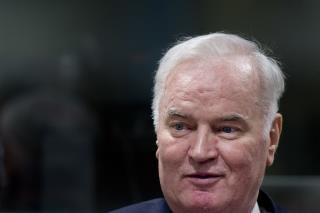Ratko Mladic 2014