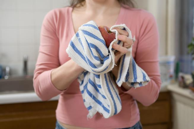 Kitchen towels could cause food poisoning