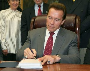Arnold Schwarzenegger vetoed 95 bills this weekend during a condensed signing period.