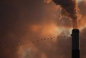 A flock of geese fly past a smokestack at the Jeffery Energy Center coal power plant near Emmitt, Kan. Saturday, Jan. 10, 2009.