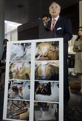 Los Angeles Police Chief William Bratton speaks about a 2008 dogfighting bust.