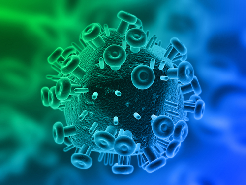 B19 virus in adults