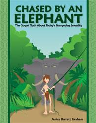 The cover of 'Chased by an Elephant by Janice Barrett Graham