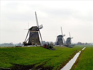 Tilting at Dutch windmills.
