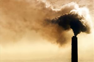 Scientists have linked air pollution to brain damage.