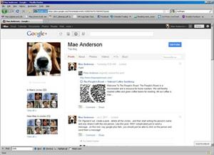 This screen shot shows a page from Google Plus.