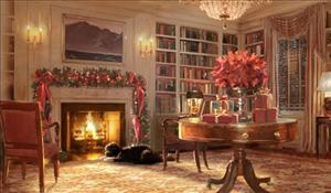 The only Obama to appear in this year's White House Christmas card is Bo, the family's Portuguese water hound.