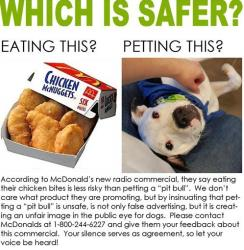 Stephanie Filer, communications manager for the Animal Rescue League of Iowa  posted this illustration on social media sites to protest the McDonald's ad.
