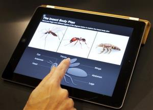 An Apple employee demonstrates an interactive feature of iBooks 2 for iPad earlier this year.