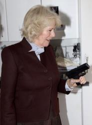 The duchess, in the kitchen, with a pistol.