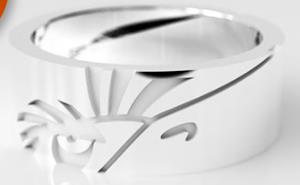 A photo of The Mighty Eagle Ring.