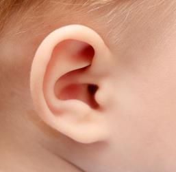 Scientists have found a gene that causes deafness in babies.