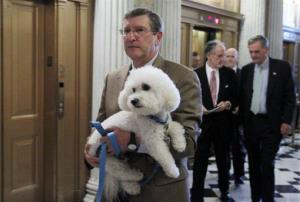 In this Aug. 5, 2010 file photo, Sen. Kent Conrad, D-ND, carries his dog Dakota as he walks to the Senate floor on Capitol Hill in Washington.