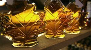 Maple syrup bottles line a shelf.