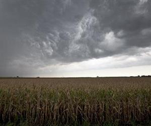In this Aug. 8, 2012, file photo, dark clouds from a passing thunderstorm hang over a dry cornfield in Blair, Neb.