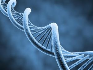 Online genetic data can point to entire families.
