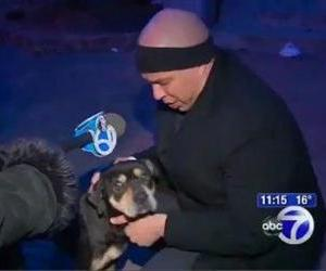Cory Booker pets the freezing pooch in this TV screenshot.