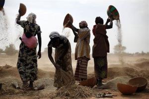 Malian women sift wheat in a field near Segou, central Mali, on Tuesday, Jan. 22.