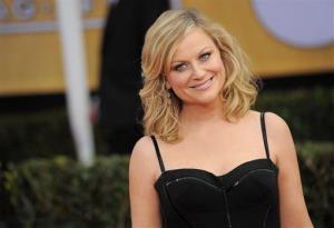 Amy Poehler arrives at the 19th Annual Screen Actors Guild Awards at the Shrine Auditorium in Los Angeles on Sunday Jan. 27, 2013.