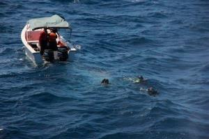 In this Jan. 10 file photo, divers search for the plane off the coast of Venezuela.