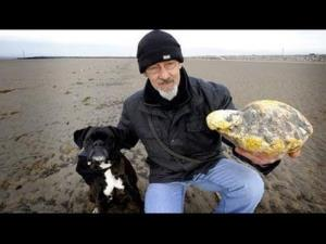 Ken Wilman and his dog Madge found a $68,000 lump of ambergris, or whale vomit, on an England beach.