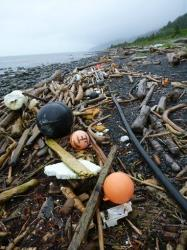 In this July 2012 file photo provided by the National Oceanic and Atmospheric Administration (NOAA), buoys, foam and other debris are strewn about a beach on Kayak Island, Alaska.