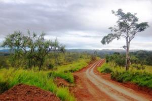 A rural road in Papua New Guinea.