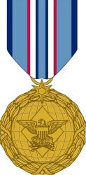 The new Distinguished Warfare Medal.