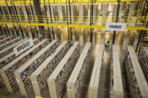 Amazon would move a few inches closer to a monopoly in the book business if it gets the domain names it is seeking, Turow says.