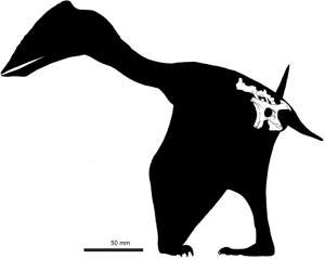 Speculative reconstruction of Vectidraco daisymorrisae.