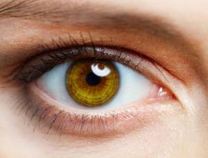Could cholesterol-lowering eye drops fight blindness?
