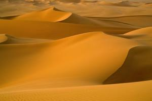 The Sahara looked much different about 5,000 years ago.