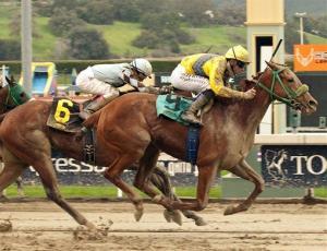 Two horses racing at the California Breeders Champion Stakes on Saturday, Jan. 26, 2013, at Santa Anita Park in Arcadia, Calif.