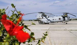A US Marines' helicopter sits as a hibiscus blooms at Marine Corps Air Station Futenma on the southern island of Okinawa, Japan.