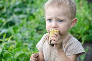A child with a mouthful of corn and dirt.