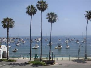 The Avalon Harbor and beach on Catalina Island.