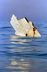 In this July 18, 1996 file photo, a piece of debris from TWA flight 800 floats in the Atlantic Ocean off Long Island, NY.