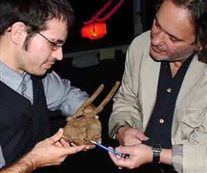 Researchers Robert A. DePalma II, left, and David A. Burnham show a Tyrannosaurus rex tooth crown embedded between the vertebrae of a hadrosaur and surrounded by bone overgrowth.