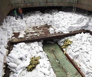 Panamanian workers stand atop sacks of sugar inside a container of a North Korean-flagged ship at the Manzanillo International container terminal.