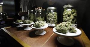 This file photo shows different strains of marijuana on display during the grand opening of the Seattle location of the Northwest Cannabis Market. It sells medical marijuana products.