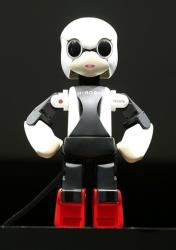 "In this June 26, 2013, humanoid communication robot Kirobo is shownin Tokyo. The first talking humanoid robot ""astronaut"" has taken off in a rocket."