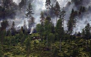 Smoke rises from a forest fire in southern Norway.