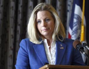 Liz Cheney speaks during a campaign appearance in Casper, Wyoming last month.