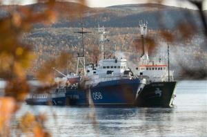 The Greenpeace ship, the Arctic Sunrise, right, is anchored side by side with the Russian Coast Guard Ship in the Kolskii gulf, near Murmansk, Russia on Monday, Sept. 30, 2013.