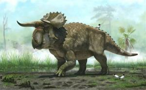 This illustration from provided by the Natural History Museum of Utah shows a Nasutoceratops titusi.