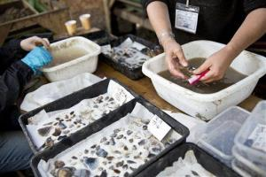 In this photo provided by the University of Buckingham, researchers examine artifacts from the archaeological site.