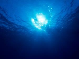 Underwater wireless internet could help warn about tsunamis, scientists say.