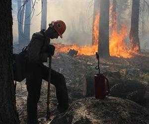 A Hotshot fire crew member rests near a controlled burn operation at Horseshoe Meadows, amid the fight against the Rim Fire, in this Sept. 4 file photo.